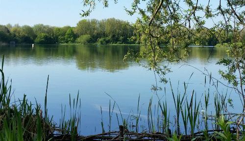 A Bedford lake